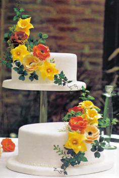 imagen torta de matrimonio de dos niveles.jpg