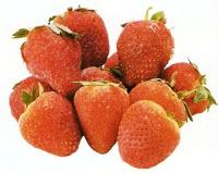Fresas- relleno